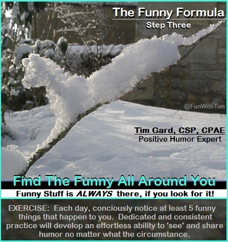 Tim Gard Funny Formula - step three