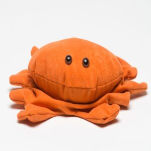 Tim Gard Shop - Cube Crab