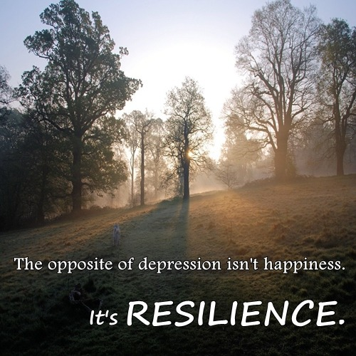 Tim Gard Wednesday Wisdom resilience