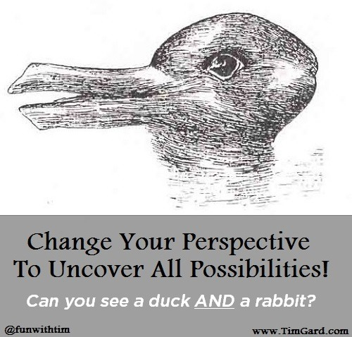 Tim Gard - Change Perspective Duck Rabbit