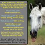 Tim Gard Joke of the Day - Buddy the Horse