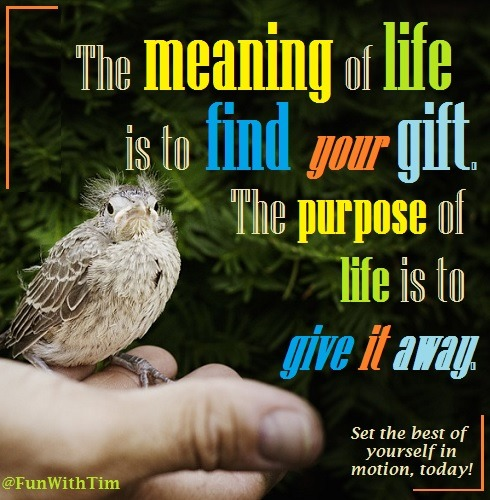 Tim Gard Meme - life meaning and purpose